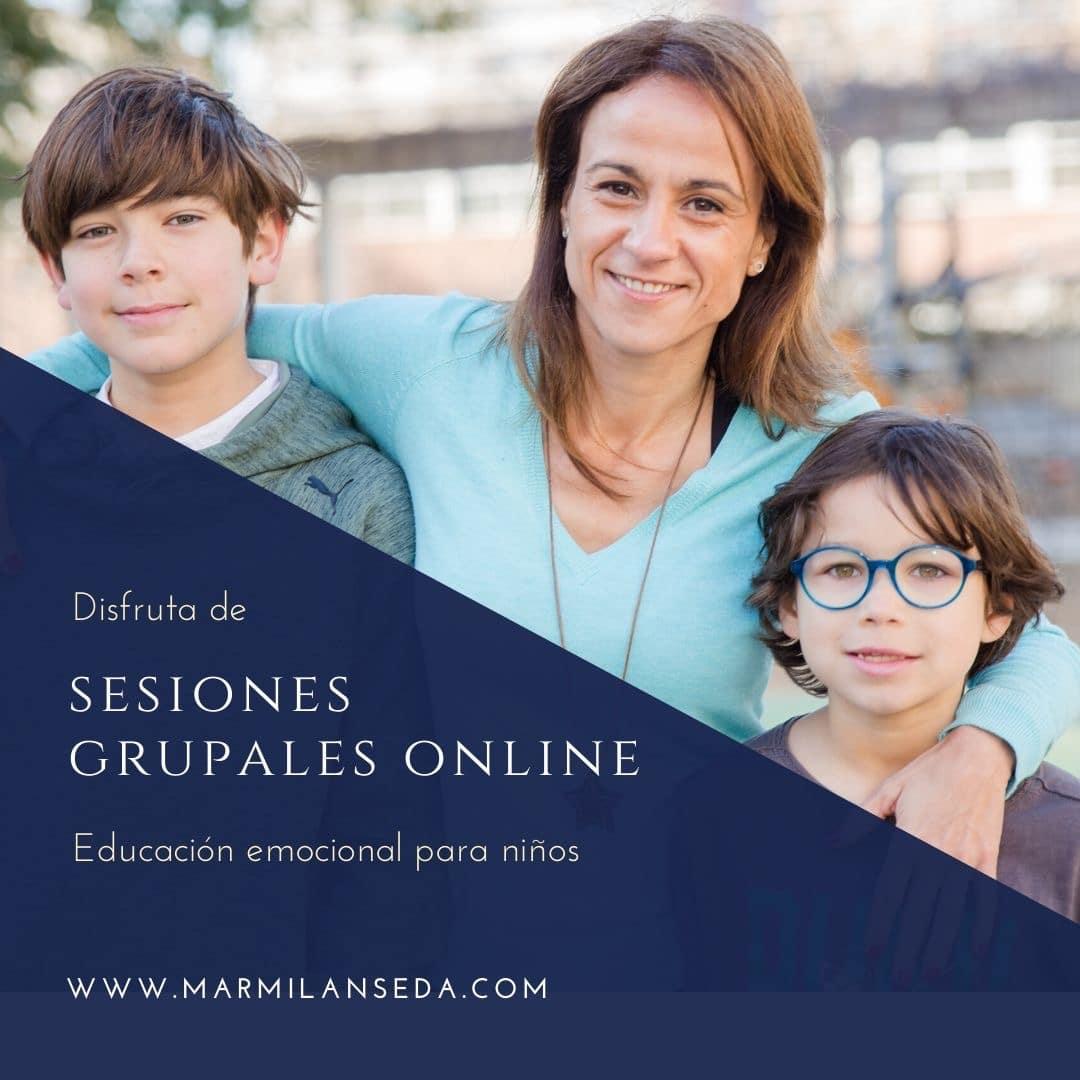 Sesiones grupales online educacion emocional